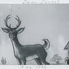 myoldphotos007-2-lisa deer forest 1966
