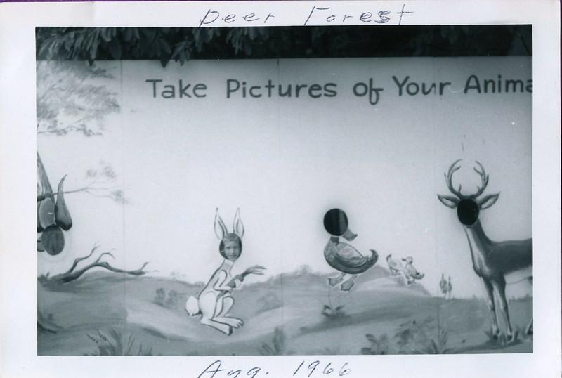 myoldphotos009-1 johnl deer forrest 1966