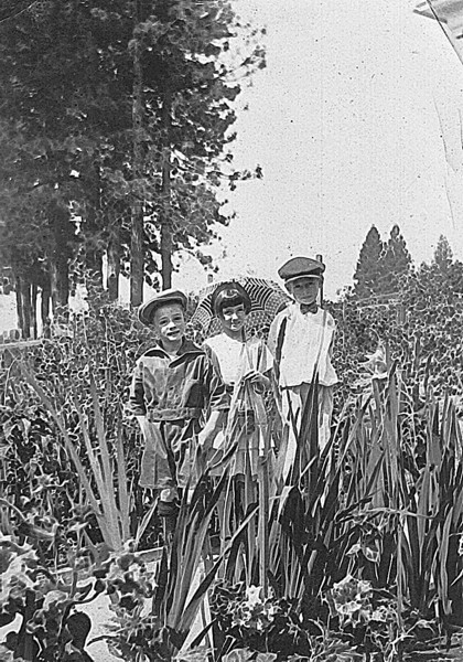 Lorin, Lorraine and Charles Harris