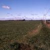 189-Former-Stephenson-potato-fields-Sept-89