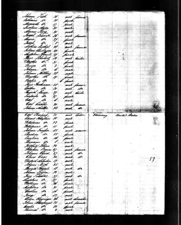 "Klimmer-Fruechtl Family on Ship's Passenger List for ""Helene"""