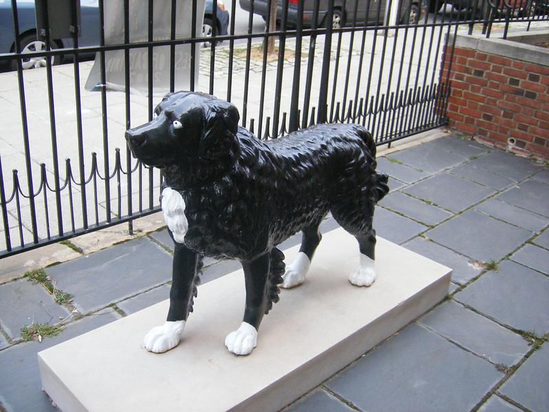 A guard dog?