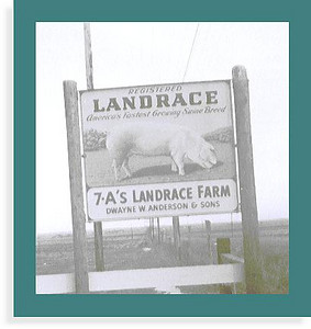 Sign out by the road at the Anderson house in Holdrege. & A's Stands for Dwayne(Dad) Josephine (Mom), Rita, Roger, Gail, Craig and Tyler. Landrace is a type of Hog.