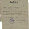 William Mueller, 1890 vaccination certificate