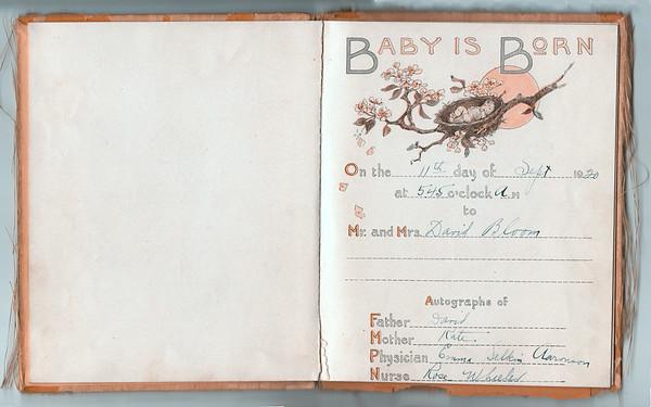 Naomi Bloom's Baby Book
