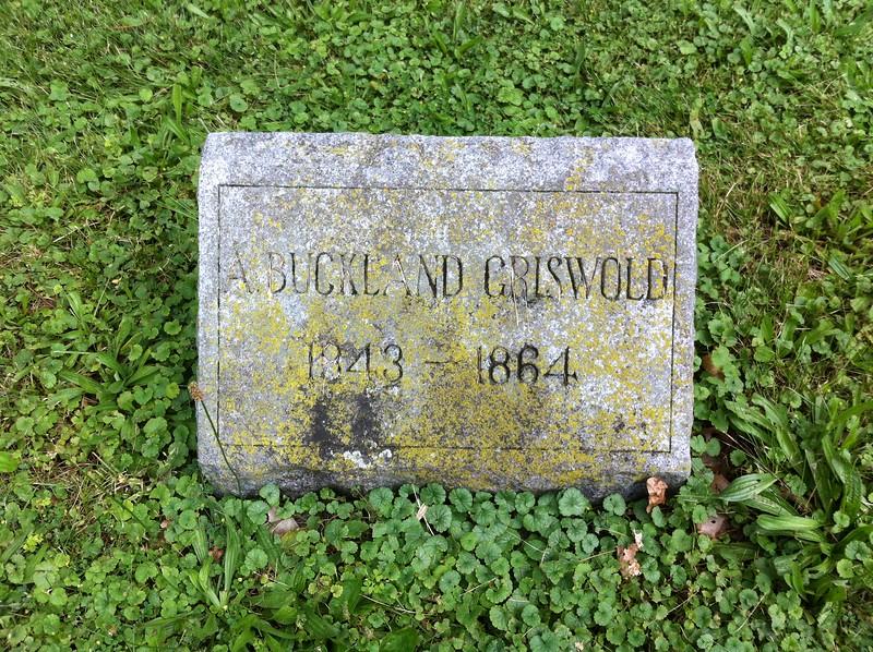 Oak Hill Cemetery, Watertown, Wisconsin, July 2014, Section 17