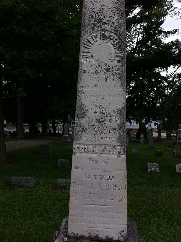 Oak Hill Cemetery, Watertown, Wisconsin, July 2014, Section 17