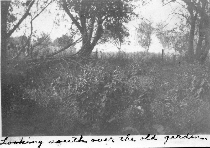 Caption reads:  Looking south over the old garden.