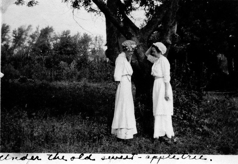 Caption reads:  Under the old sweet - appletree.