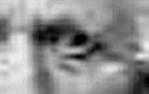 David Eye 1