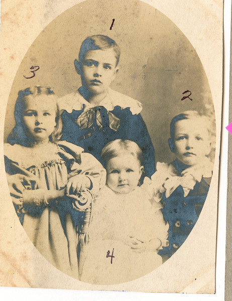 """1) Perry Winfield Dew (1891-1975), 2) Byron Elmer Dew (1893-1986), 3) Mary Lavinna Dew (1895-1992), 4) Josie Louisa Dew (1897-1999) Written in the Rogers Reunion Photo Album Volume III page 65 """"Perry in back the oldest #1, Elmer on the right – next oldest #2, Mary on the left – the oldest girl #3, Josie front center – next born #4.  The four oldest children of Wm & Fannie Dew.  1899 photo. Perry age 8, B. Elmer age 6, Mary L. age 4, Joise L. age 2"""""""