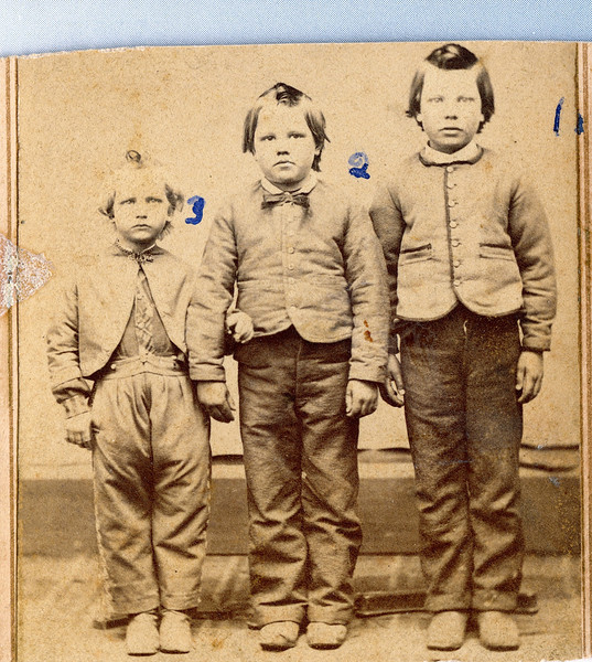 From Left to Right<br /> Leonard Sylvester Burrows (1859-1919), Loren Gilbert Burrows (1857-1918), Charles Winfield Burrows (1855-1934) sons of Timothy Barlow and Rosannah Merilla (Rogers) Burrows.  Photo taken at Johnston Photographs, 84 Mason St., Polo, Illinois.  Located in the Rogers Reunion Photo Album Volume 1, page 10.