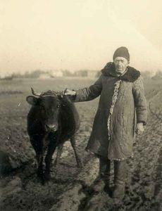"""""""Sokolow Podlaski"""" 1941"""