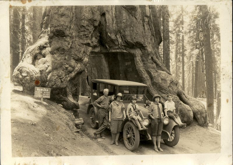 F.G.H. Stevens family at Wawona.  Sitting on left fender Adelaide Bush Stevens (1919-  )<br /> standing in front Lois Mary Stevens (1913-1969) and on right fender Frances Harrison Stevens (1916 - 2009)
