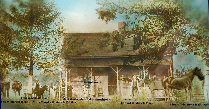 This picture was taken in 1899<br /> Location approx 10 miles south of Vanceburg, KY<br /> Left to Right<br /> son Pete Wintersole (by two cows) - son Fred Wintersole (by one cow) - mother Miriah Murphy Wintersole (next to cow) - daughter Liddia Wintersole Shulte (by corner of porch) - unknown woman in chair that lived with them that year - son Edward Wintersole (by horse) - father Edward Wintersole Sr.