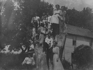 The Sloan Farm early 1900's. Clarence Beryl Werts top of tree. Lower left Fred Laird.