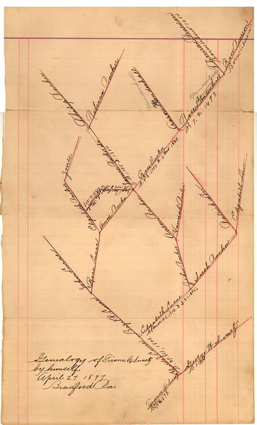 Swartz Family Tree by Torance Swartz, 1897