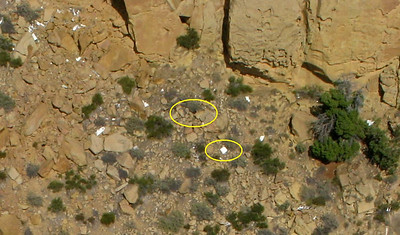 At the base of the cliff and directly below the impact point is a concentration of small wreckage fragments.   Circled are what appears to be the nose wheel tire and a door from one of the wing baggage compartments.