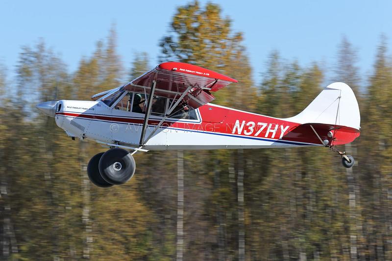 N37HY   Aviat Aircraft Inc. A-1B Husky