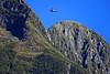ZK-MCM   GippsAero GA8 Airvan   Milford Sound Flightseeing