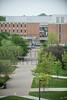 16449 Denise Robinow, Summer on Campus 9-24-15