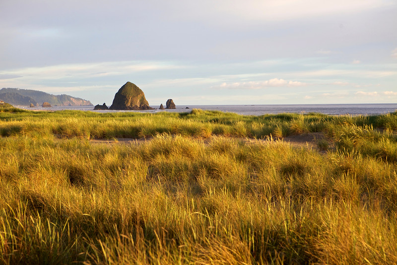 Dune grass catches the light of sunset on the north end of Cannon Beach with Haystack Rock ever iconic.