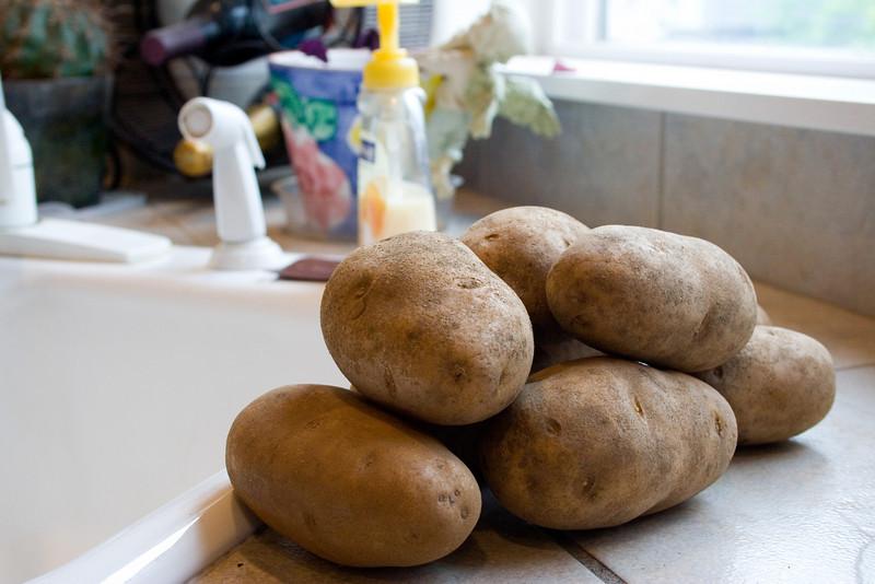 4-28-10 Week in the Life: Potato Dinner