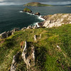 Ring of Kerry Seascape