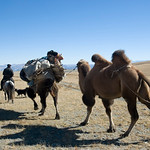 General Mongolia