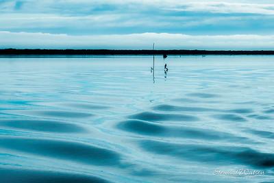 Okarito Dreamy blue boat wake