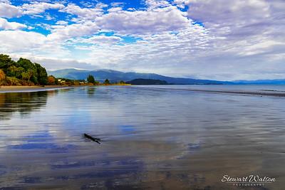 Lonely log on Pohara beach