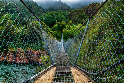The longest swing bridge in NZ in the Upper Buller gorge