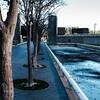 Tranquility Park DSCF0510-05101