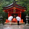 12-1-2013 Umbrellas at Hakone Shrine
