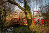 14-Jan-17 Japanese Garden, Abbey Park.