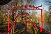 15-Jan-17 Japanese Garden, Abbey Park.