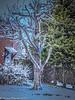 12-Dec-17 More Snow.