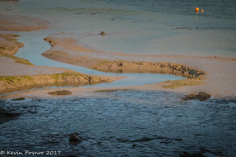 25-Jun-17 Low Tide