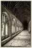 14-May-17 The Cloisters, New College, Oxford.