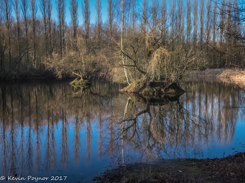 9-Jan-17 Winter Reflections.