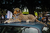 27-Nov-18 Soft toy Jaguar on a Jaguar roof.