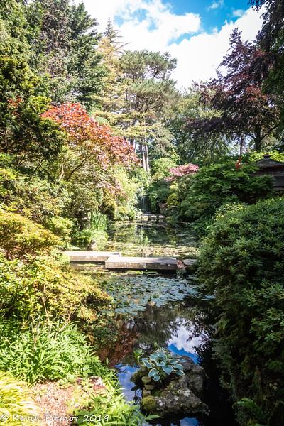 29-Oct-19 Compton Acres - Japanese Garden.