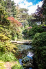 29-Oct-19 Compton Acres - Japanese Garden.