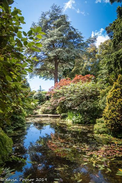 28-Oct-19 Compton Acres - Japanese Garden.