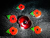 10-Nov-19 Lest We Forget The Sacrifices of Those Who Have Fought For Our Freedoms