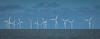 W for Wind Farm or Windmills