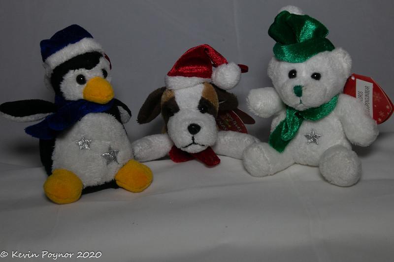 13-Dec-20 Festive Friends