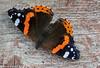 4-Sep-21 Red Admiral Butterfly (Vanessa atalanta)