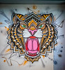 5-Aug-21 2021 Tigers Logo