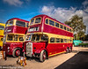 22-Oct-21 1939 AEC Renown  CBC 921 and 1958 Leyland PD3 TBC 164